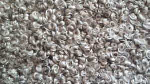 Gotlands sheep wool